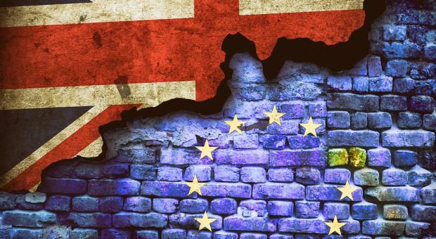 Związek zawodowy GMB poparł ponowne głosowanie ws. Brexitu