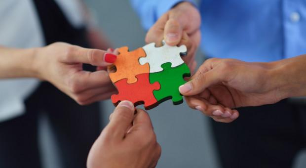 Zgrany zespół to efektywny zespół. Jak skutecznie nim zarządzać?