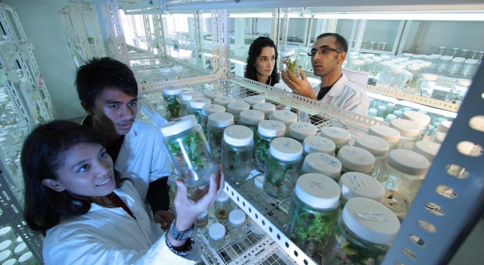 Coraz więcej młodych ludzi myśli o karierze naukowca