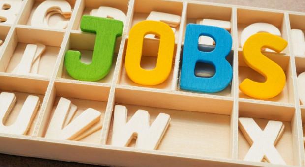 Raport GoldenLine: Kogo szukają rekruterzy?