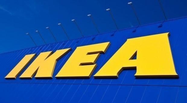 Ikea rekrutuje do sklepu w Blue City. Praca niemal od zaraz