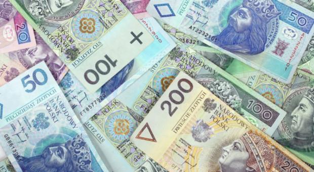 Badanie: do 40 proc. firm w Polsce pożycza pieniądze, by finansować bieżącą działalność i inwestycje