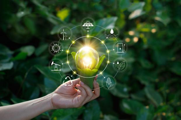 InnoEnergy to nie tylko zielona energia, to także miejsca pracy