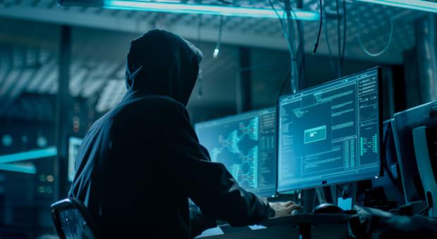 Oprogramowanie zastąpi ludzi? Małe firmy mogą bronić się przed cyberatakami