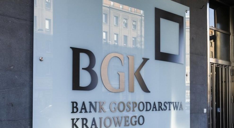 BGK: firmy korzystają z unijnego finansowania zwrotnego