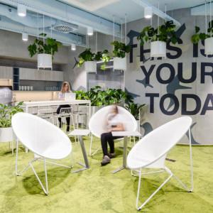 Jak zaaranżować przestrzeń pracy w zgodzie z naturą?