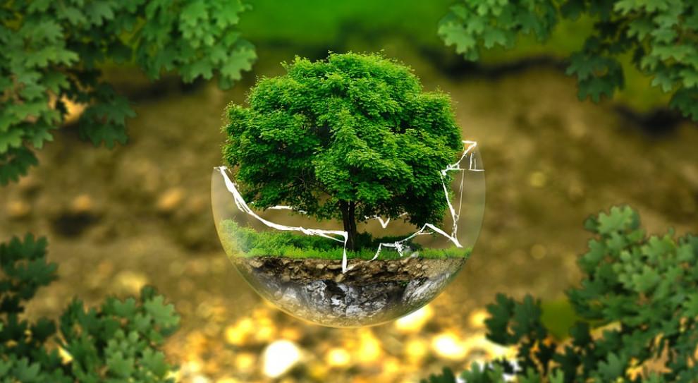 Małe i średnie firmy nie wiedzą, co to jest CSR