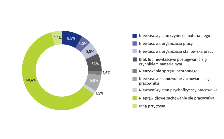 Przyczyny wypadków w okresie styczeń - wrzesień 2018 r. (źródło: GUS/stat.gov.pl)