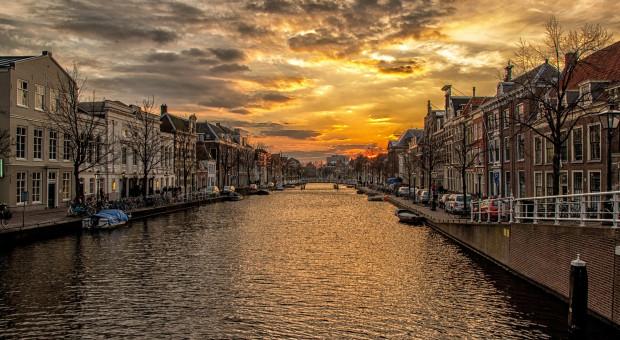 Praca w Holandii. Warunki i zarobki przyciągają Polaków