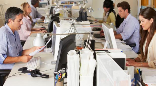 Rynek pracy oczami pracowników. Oto ciekawy raport