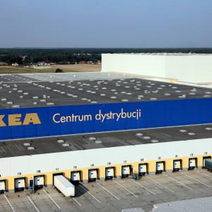 Drugie życie kuchni i wegański hot-dog. Co dostrzegła Ikea?