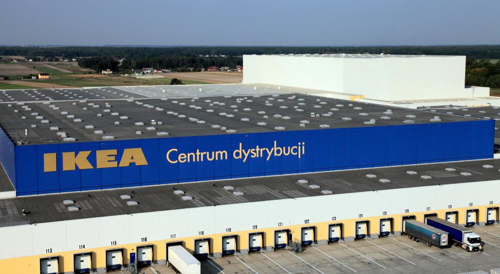Klienci doceniają ideę zrównoważonego rozwoju. Ikea umie z tego korzystać