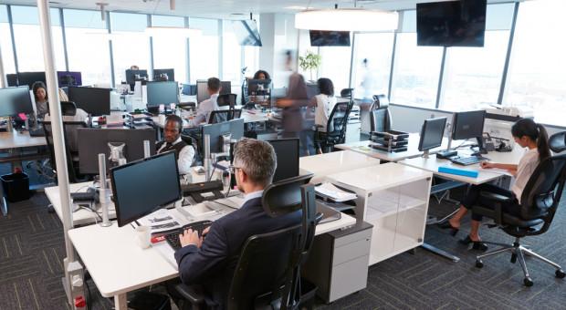 Aranżacja biura wpływa na efektywność pracy. 5 trendów biurowych na 2019 rok