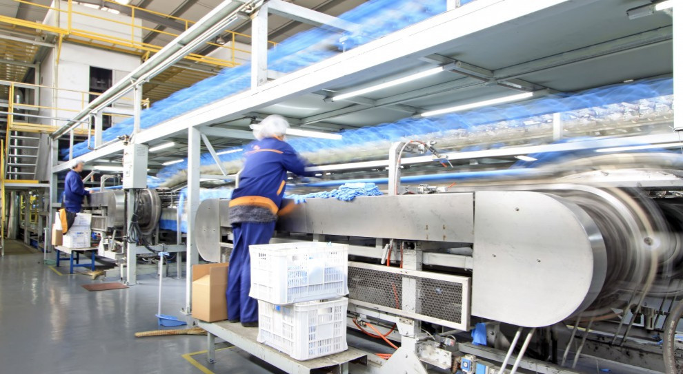 Produkcja przemysłowa rośnie w siłę. Co piąta firma będzie zatrudniać