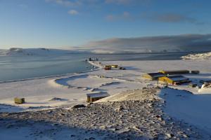 Chcesz pracować na Antarktyce? Ta oferta pracy jest dla ciebie