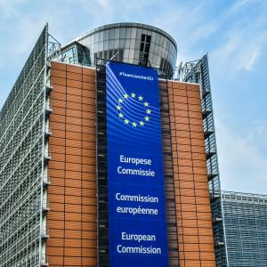 Co dalej z pomysłem Europejskiego Urzędu ds. Pracy?