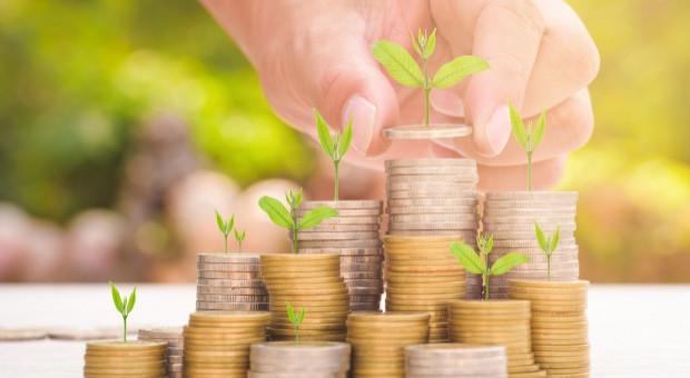 BCC: Kwitnąca gospodarka to efekt pracowitości przedsiębiorców