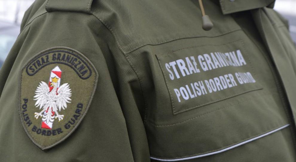 Wielkopolskie.  Nielegalni imigranci zatrzymani w fabryce Volkswagena
