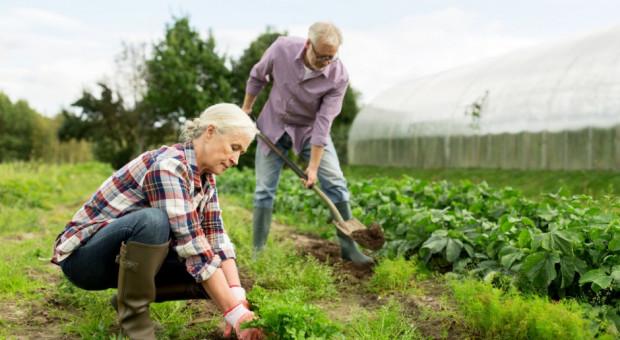 Nie będzie wcześniejszych emerytur dla rolników