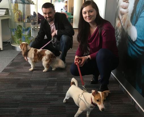 Psy w Nestle Pruina. (Fot. mat. pras.)