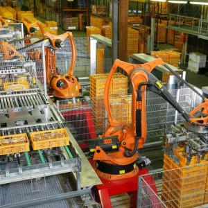 Automatyzacja procesów nie oznacza rezygnacji z pracowników. Oto przykład