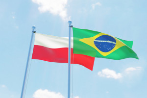 Polacy z Brazylii ratunkiem dla rynku pracy?