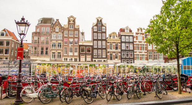 Dojeżdżasz do pracy rowerem? W Holandii mógłbyś liczyć na ulgę podatkową