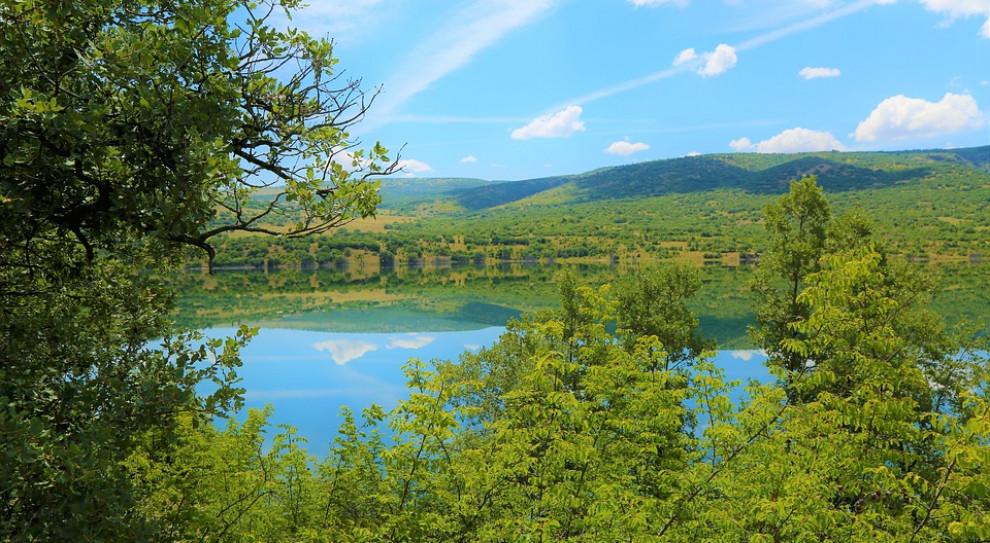 Olsztyn: Bezrobotni będą się szkolić w lesie - pierwszy taki projekt w kraju