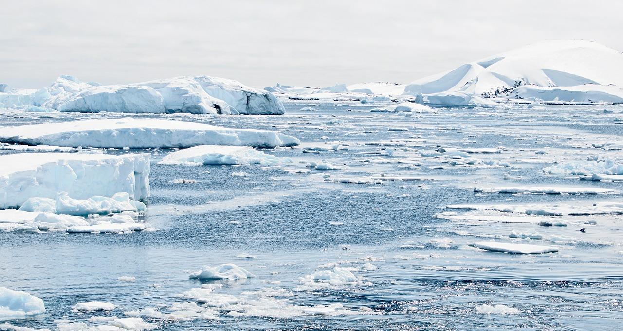 jedna z gier planszowych firmy Fun Hunters jest inspirowana historią dwóch podróżników, którzy zdobyli biegun południowy – Amundsena i Scotta. (Fot. Pixabay)