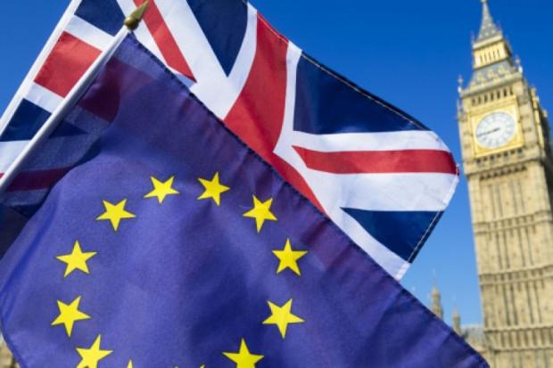 Wielka Brytania: Setki tysięcy osób na proteście przeciwko brexitowi