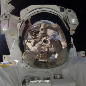 Pijawki lekarskie z Namysłowa na pomoc astronautom
