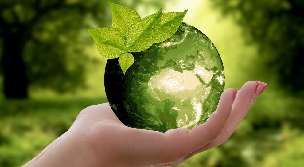 Rozwiązania prośrodowiskowe firm pod lupą przyszłych i obecnych pracowników