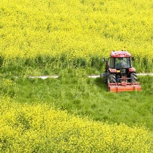 KRUS chce poprawić bezpieczeństwo pracy w rolnictwie