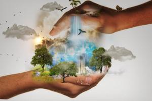 Zielona strona mocy opłaca się firmom. Zresztą nie mają już wyboru