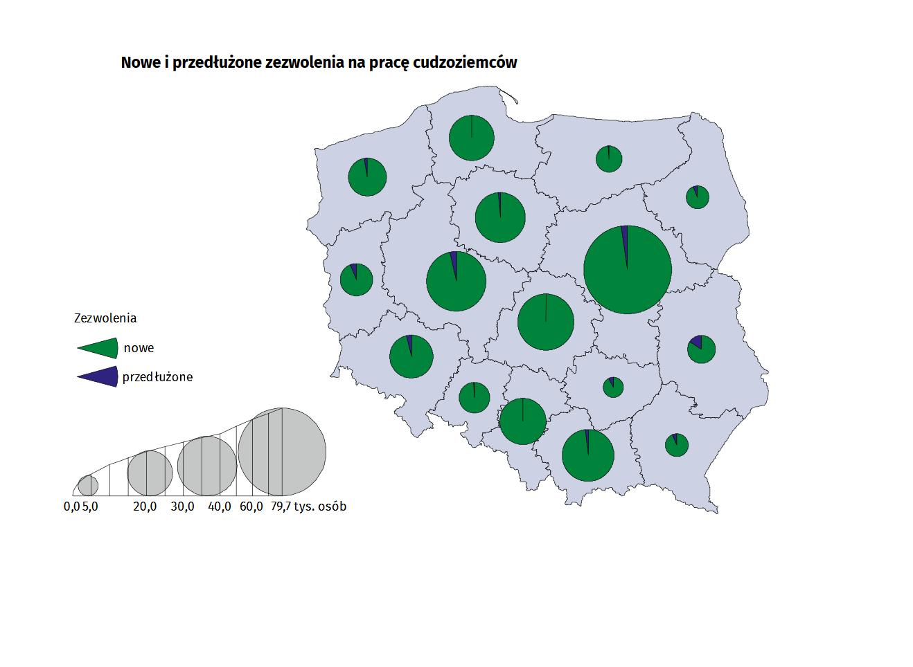 Nowe i przedłużone zezwolenia na pracę cudzoziemców w Polsce. (źródło: GUS/materiały prasowe)
