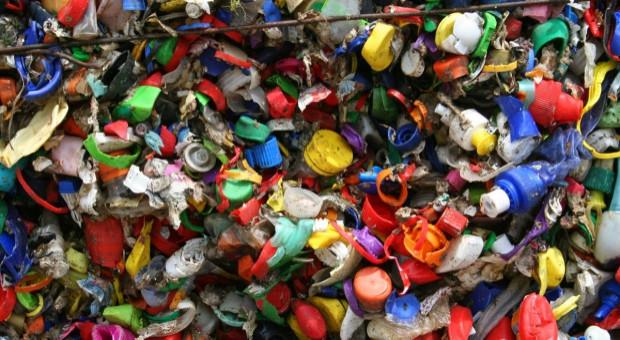 Sieci handlowe ograniczają użycie plastiku