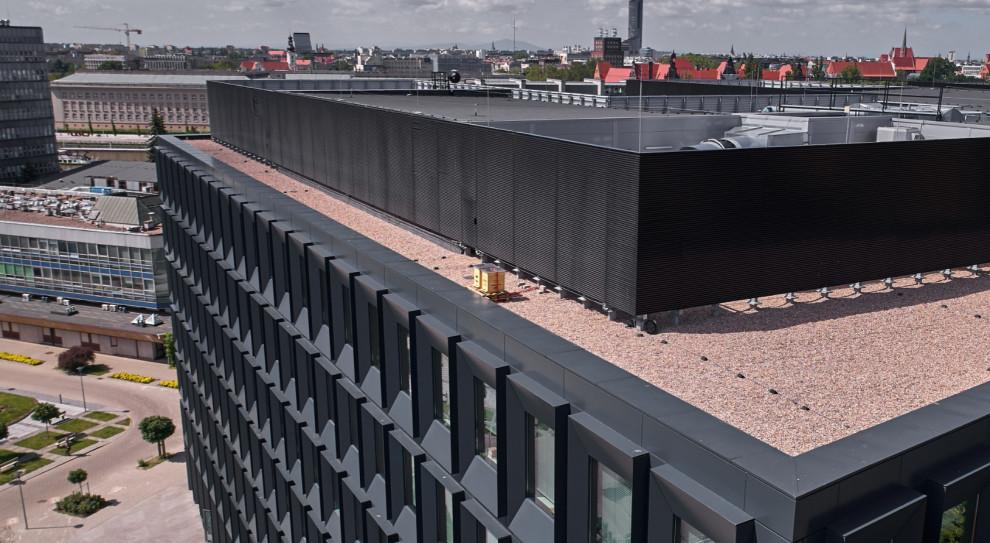 Wrocławski biurowiec Green2Day ma nowych lokatorów. Pszczoły