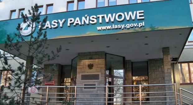 Zakład Lasów Poznańskich poszukuje wolontariuszy