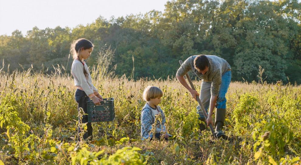 Główny Inspektor Pracy apeluje do rolników: zapewnijcie bezpieczeństwo dzieciom