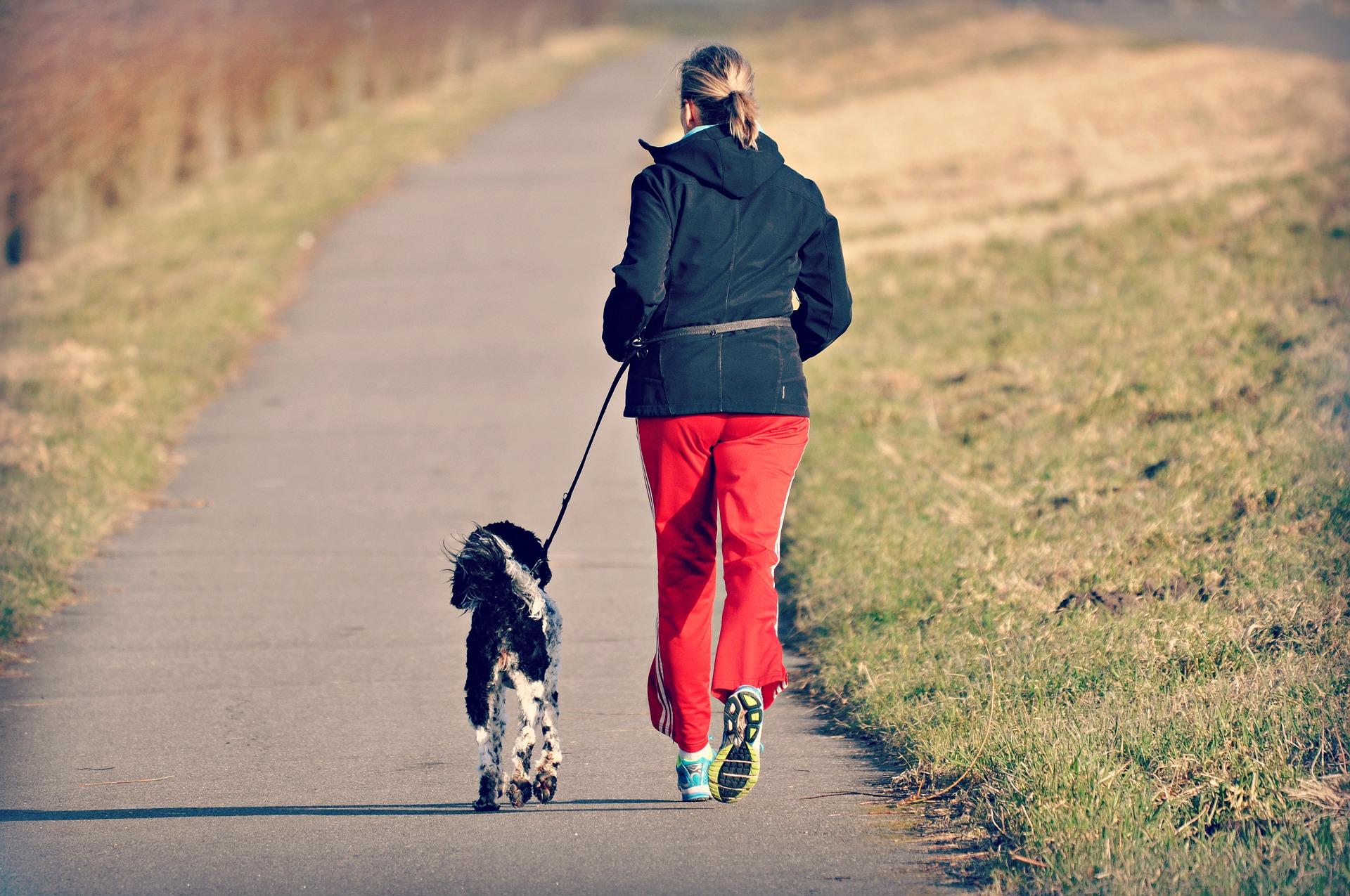 Eksperci zachęcają, by aktywność fizyczną w postaci spacerów wprowadzić w codzienną rutynę. (Fot. Pixabay)