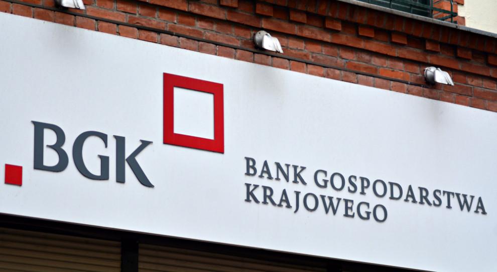BGK uruchamia kredyt dla przedsiębiorców. Do podziału 350 mln zł