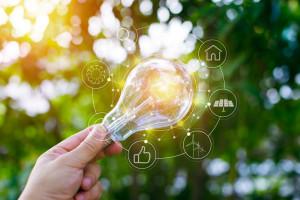 Energia Plus, czyli nowy program dla firm. Nie tylko ekologicznych
