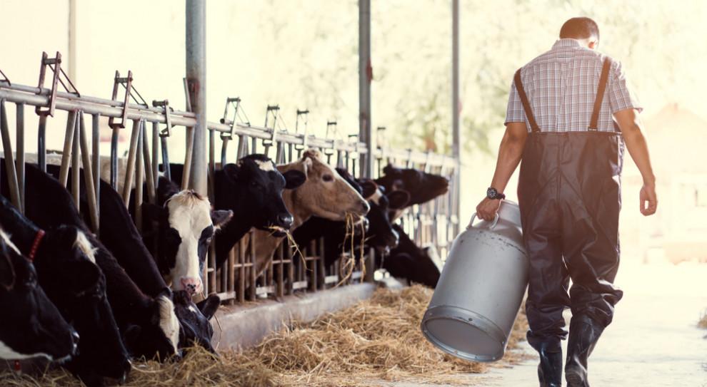 GUS: Rolnicy pracują najwięcej. Nauczyciele najmniej