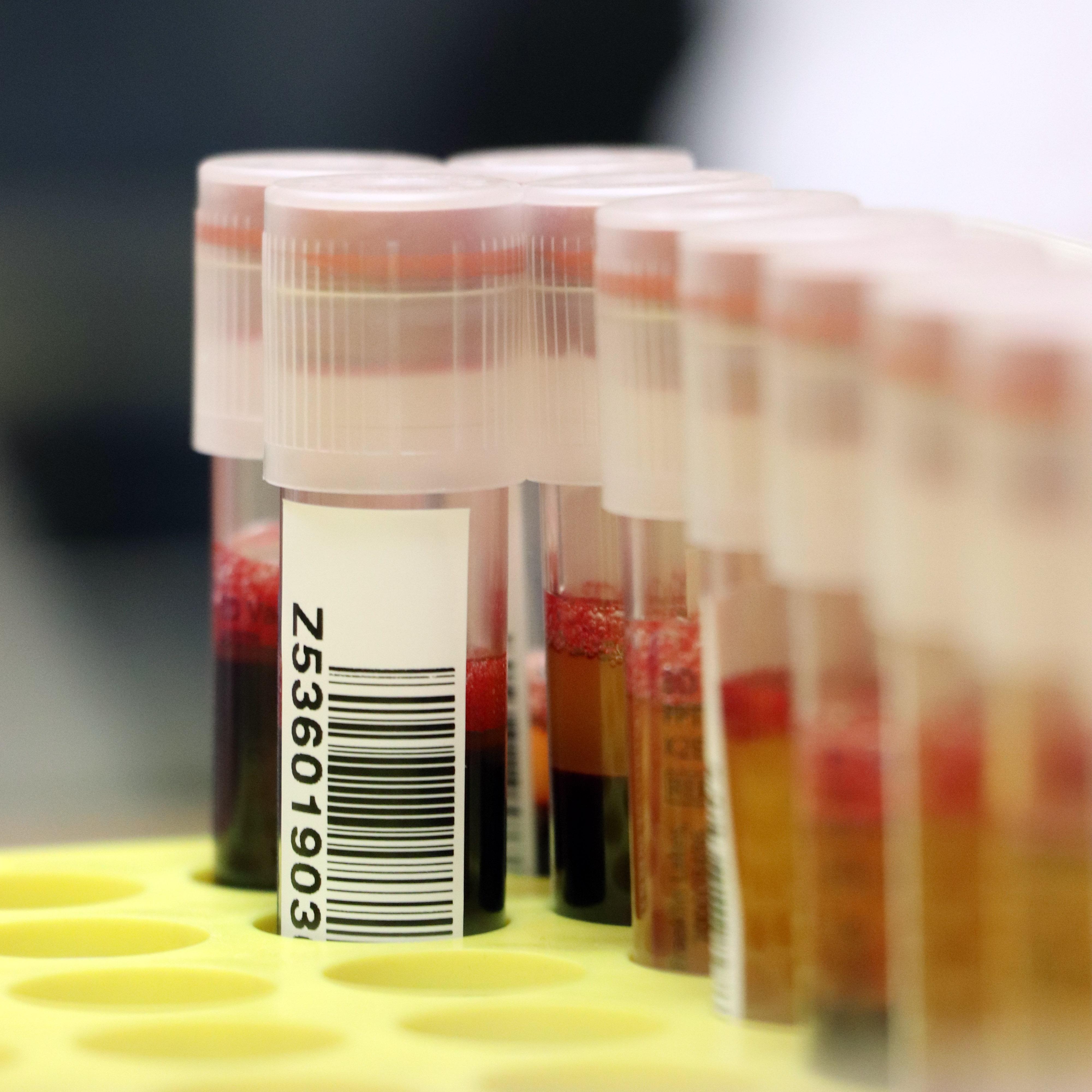 Impel stara się mobilizować swoich pracowników do oddawania krwi także w komunikacji wewnętrznej. (fot. Impel/materiały prasowe)