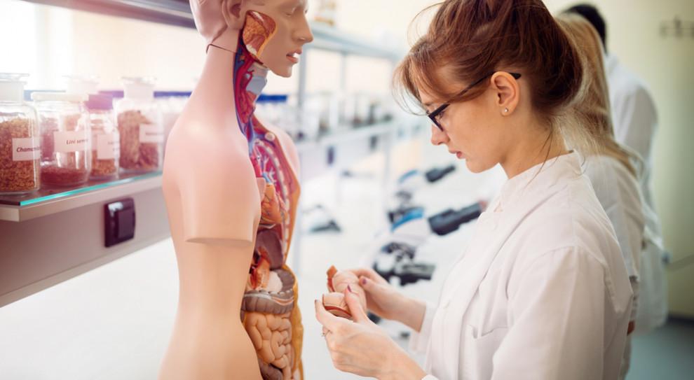 Ogromny wzrost chętnych na kierunek lekarski w Uniwersytecie Medycznym w Białymstoku