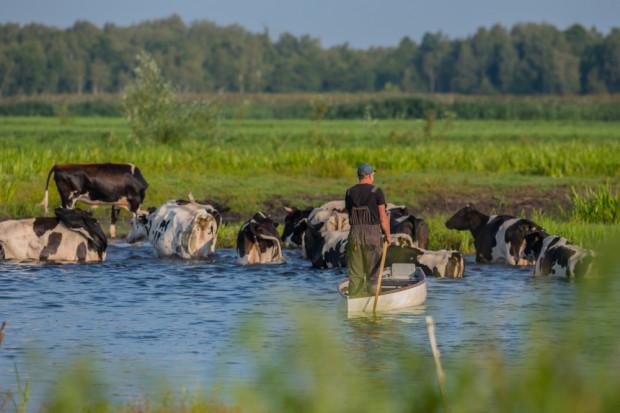 Rolnicze OPZZ: państwo powinno przejąć kontrolę nad gospodarką łowiecką