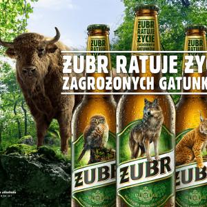 Nietypowa akcja CSR Kompanii Piwowarskiej. Żubr zniknie z etykiet piwa