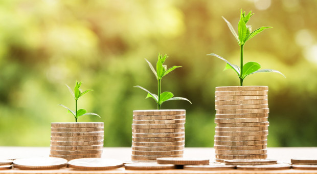 MŚP dołączają do PPK. Podpisano 420 tys. umów