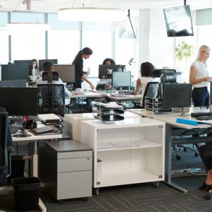 Wzięli pod lupę pracowników biurowych. Odkryli pięć osobowości