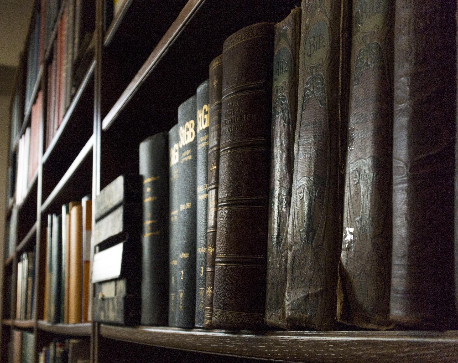 Młodzi adepci prawa po studiach i czasie spędzonym w bibliotekach chcą pracować w oparciu o umowę o pracę. (fot. pixabay.com)